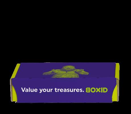 Verzendbox S 22x15.7x5 cm